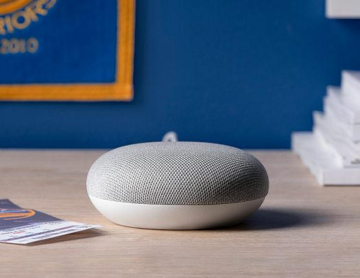 Warriors Google Home Mini